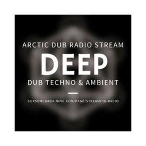 Fiche de la radio Arctic Dub