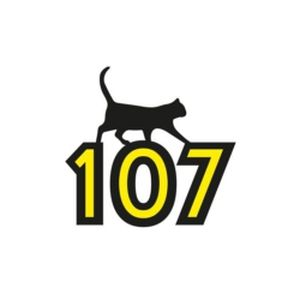 Fiche de la radio Black Cat 107