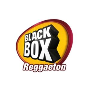 Fiche de la radio BlackBox Reggaeton