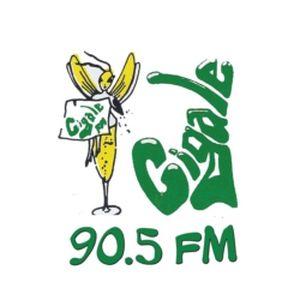 Fiche de la radio Cigale FM