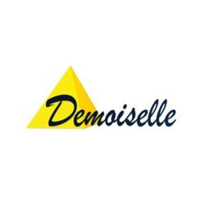 Fiche de la radio Demoiselle FM