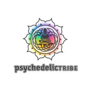 Fiche de la radio Digital Impulse – Psychedelic Tribe