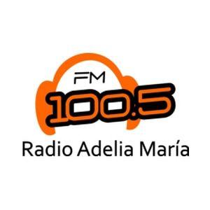 Fiche de la radio FM 100.5