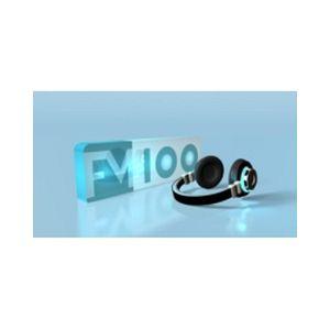 Fiche de la radio FM 100