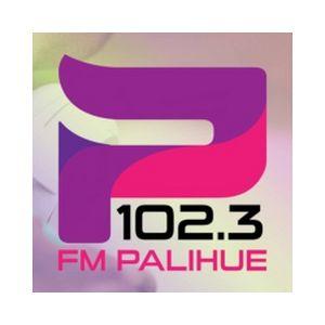 Fiche de la radio FM Palihue 102.3