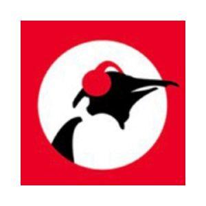 Fiche de la radio Pinguin Radio