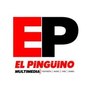 Fiche de la radio Pingüino Radio 95.3 FM