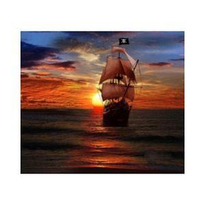 Fiche de la radio Pirate Radio of the Treasure Coast