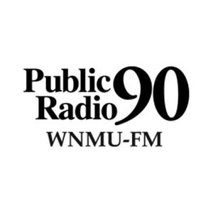Fiche de la radio Public Radio 90