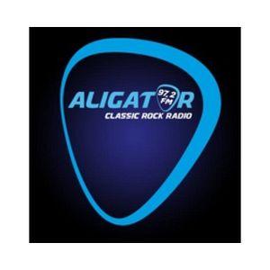 Fiche de la radio Rádio Aligator