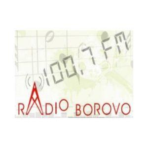 Fiche de la radio Radio Borovo 100.7 FM