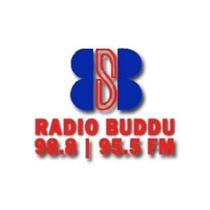 Fiche de la radio Radio Buddu