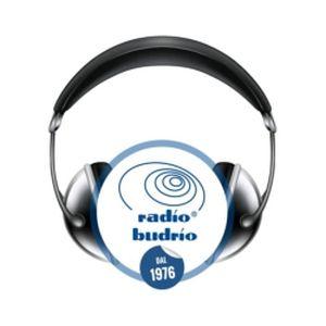 Fiche de la radio Radio Budrio