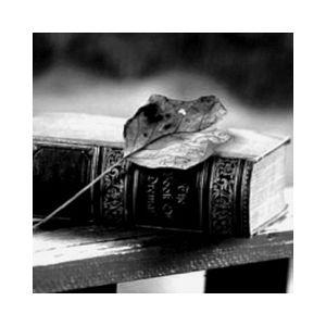 Fiche de la radio Радио Каприз – Поэзия