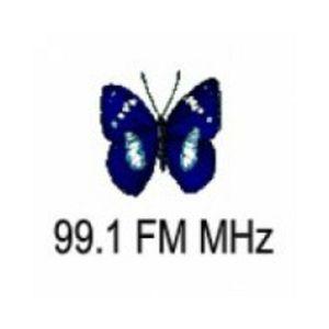Fiche de la radio Radio Marcela 99.1FM MHz