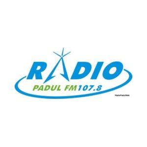 Fiche de la radio Radio Padul