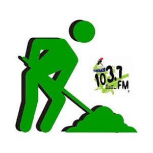 Fiche de la radio Radio Uchumachi
