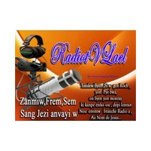 Fiche de la radio Radiotvlael
