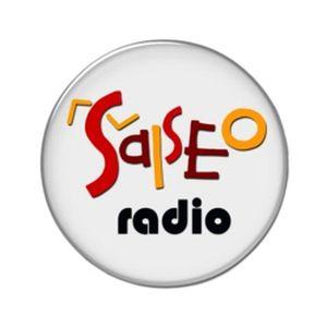 Fiche de la radio Salseo Radio