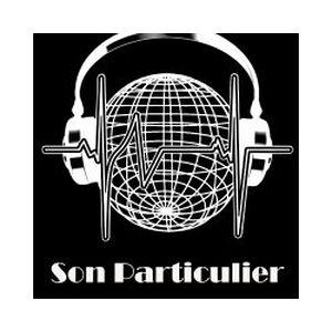 Fiche de la radio Station Son Particulier