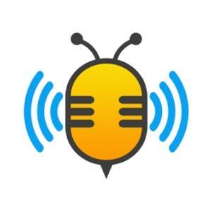 Fiche de la radio The buzzz