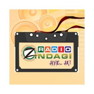 Fiche de la radio WCTN Radio Zindagi 950