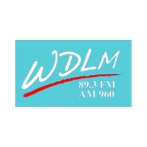 Fiche de la radio WDLM Moody Broadcasting Network 89.3 FM