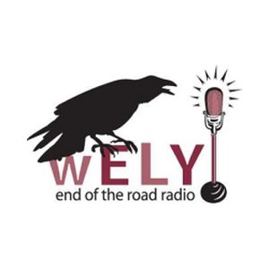 Fiche de la radio WELY 94.5