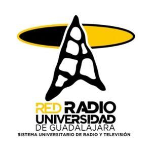 Fiche de la radio XHUGP Universidad Puerto Vallarta 104.3 FM