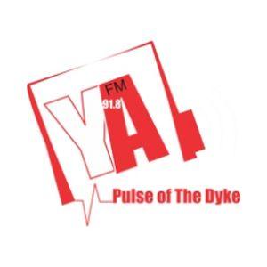 Fiche de la radio YaFM